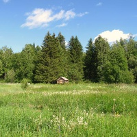 Деревня Хошлог. Лето 2011. Западная Сибирь. ХМао-Югра.