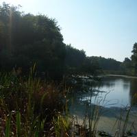 Под садом (Байдак) Солнцево Курской области
