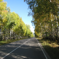 Краски осени. Дорога в Ербинское