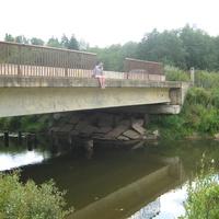куниченский мост