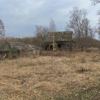 д.Тополево, весна 2010 года, остатки усадьбы колхозной семьи.