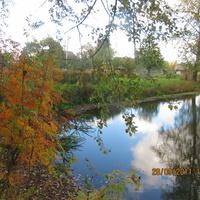 Осень в Муравничах