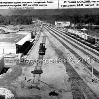 Вид на станцию в сторону Ургала