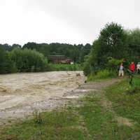 Луква 2008