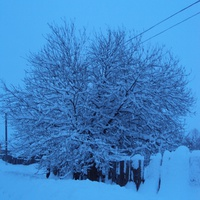 Зимой в Июльском