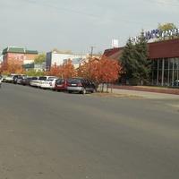 Улица Скорикова