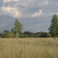 Лето 2011 г.