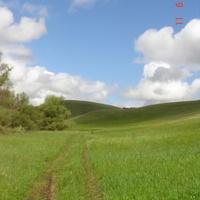 У холма