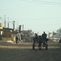 в окрестностях Дакара
