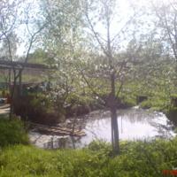 Один из прудов в Барово
