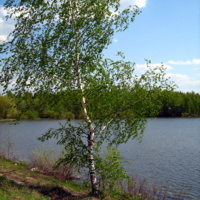 На берегу р. Сухмань (плотина у Барово)