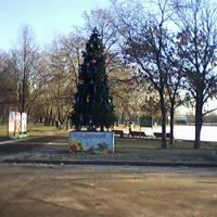 """У кинотеатра """"Марс"""". Снега еще нет, а елка уже стоит.23 ноября 2011."""