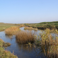 Река Тащенак