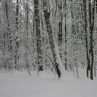 А в Москве зима
