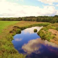 Речка Сарагожа у деревни Федяйково