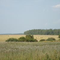 вид на поля за деревней