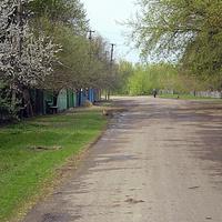 Моя улица