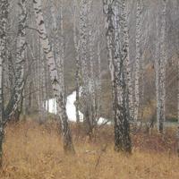 Бигила. осень в лесу