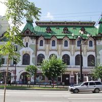 Ул. Муравьёва-Амурского (Городская дума,Дворец пионеров)