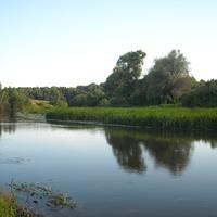 Река Упа в районе Опочни