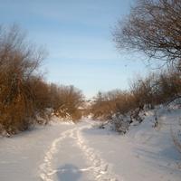 речка Карасулька зимой