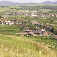 Село Екатериновка 2011 г.