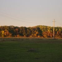 осень в колхозном саду