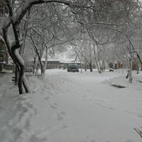 Новое зимой