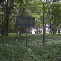 Пейзажный парк в Боблово.