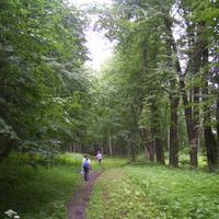 В Бобловском парке.