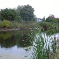 Спас-Коркодино (средний пруд).
