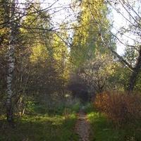 Осенние тропы.(Струбково)