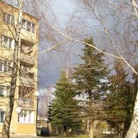 Струбково, улица Центральная.