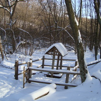 Біла криничка взимку