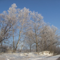 Пруд в Костомарово