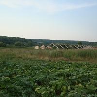 Ферма в Распопово