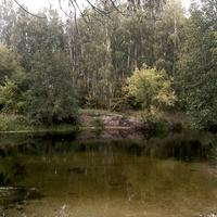 прекрасные места для отдыха на Битюге у с. Большие Ясырки