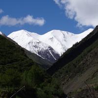 Гора Цайлакъан