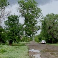 Фёдоровка. После дождя.