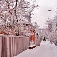 Зимний Клин