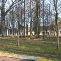 Палац князеў Друцка-Любецкіх у Новым Полі