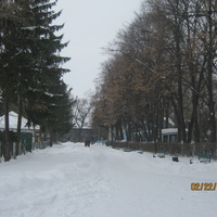 аллея в детский сад