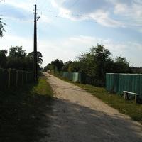Ташенська вулиця