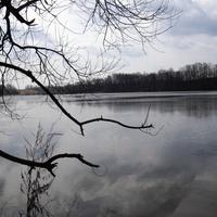 Вороновское озеро(Полонское)