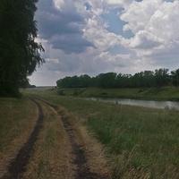 пруд у питомника