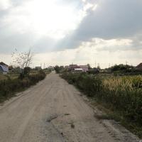 Дорога от Оки