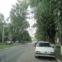 Мвы у дороги