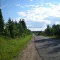 дорога в никитино