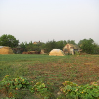 Марьевка огороды