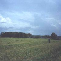 Вид на Иверовское ( лесок слева - кладбище )